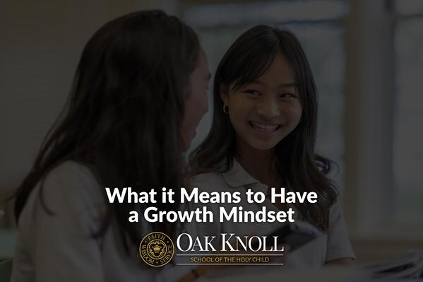 What it Means to Have a Growth Mindset